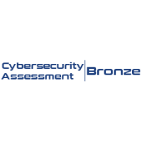 Cybersecurity Assessment - BRONZE